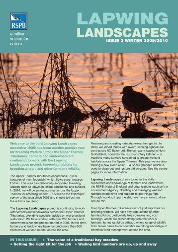 Lapwing Landscapes newsletter - RSPB