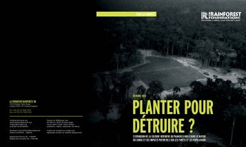 36274_RainforestFoundation_PalmOilReport-French