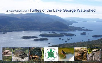 LGTMP FIELD GUIDE may 11.indd - Lake George Association