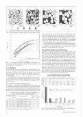 Zum Wachstum von Eichensaat unter Kiefernschirm im Forstamt ... - Seite 5