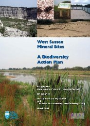 West Sussex Mineral Sites Biodiversity Action Plan