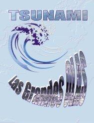 Tsunami, las grandes olas - Shoa