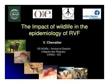 (Microsoft PowerPoint - CHEVALIER - CIRAD - Wildlife ... - OIE Africa