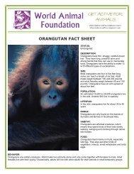 ORANGUTAN FACT SHEET - World Animal Foundation