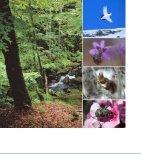 Naturreservat i Sverige - Page 2
