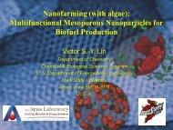 Nanofarming (with algae): Multifunctional Mesoporous ...
