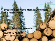 Bild 1 - Invest in Forest