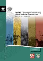 Promoting Resource Efficiency in Small & Medium size ... - UNEP