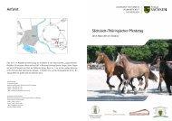 Programm - Sächsisches Staatsministerium für Umwelt und ...