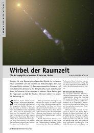 Download pdf - Wissenschaft Online