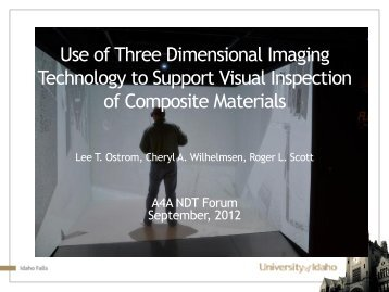 Use of Three Dimensional Imaging Technology to Support Visual ...