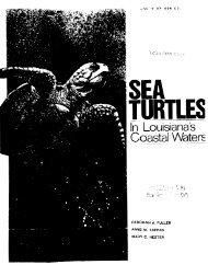 Sea Turtles in Louisiana's Coastal Waters - Seaturtle.org