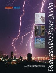 07-0347 C&I Power Quality Broc - nyseg
