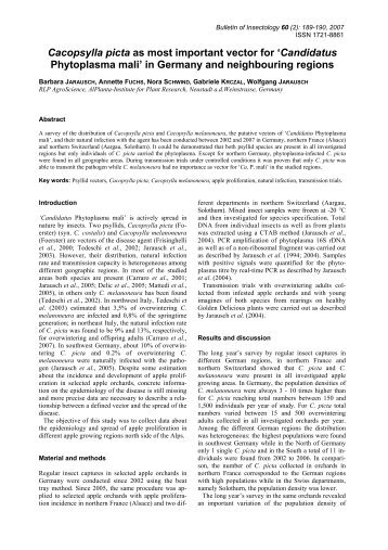 Cacopsylla picta as most important vector for ... - Bulletin of insectology
