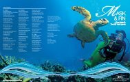 A Dive Guide To The U.S. Virgin Islands
