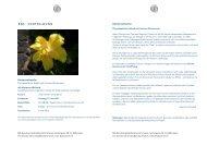 B B S ‐ F O R T B I L D U N G - Berufsverband Biodynamik Schweiz