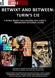 Turin's CIE - International University College of Turin