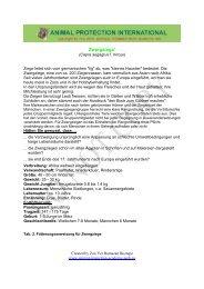"""Zwergziege"""" - Akademie für Tierschutz"""