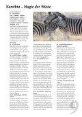 Namibia - lass uns reisen - Seite 2
