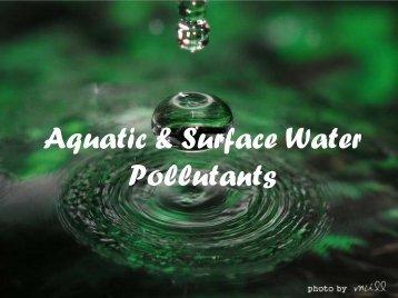 Aquatic & Surface Water Pollutants