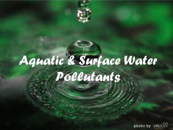 Aquatic & Surface Water Pollutants