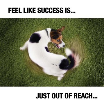 feel like success is... just out of reach... - Reckon