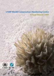 UNEP World Conservation Monitoring Centre Annual Report 2009