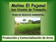 Resumen Plan de Negocio Ambiental El Pajonal - Pyme Parque ...