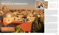 Minirock und Schläfenlocken - Reiseleiter in Israel