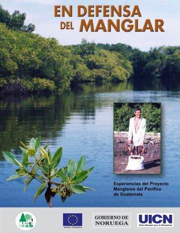 Experiencias del Proyecto Manglares del Pacifico de ... - Infoiarna