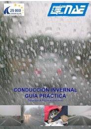 consejos conducción invernal dic 09 CNAE - Web elguardia.com.