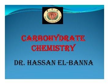 DR. HASSAN EL-BANNA