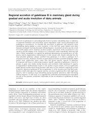 Regional accretion of gelatinase B in mammary gland during ...