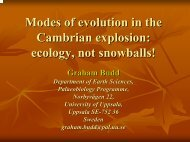 Modes of evolution in the Cambrian explosion - McMaster Origins ...