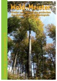 Wald - Service National de la Jeunesse