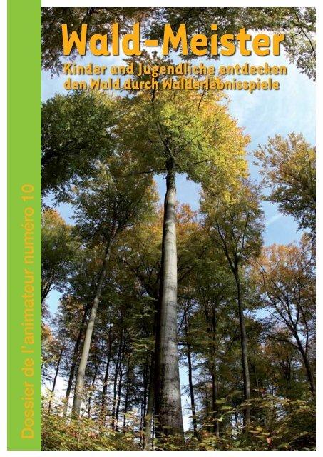 Wald Service National De La Jeunesse