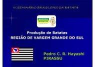 Pedro C. R. Hayashi - Associação Brasileira da Batata (ABBA)