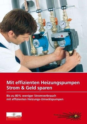 Mit effizienten Heizungspumpen Strom & Geld sparen - OÖ ...