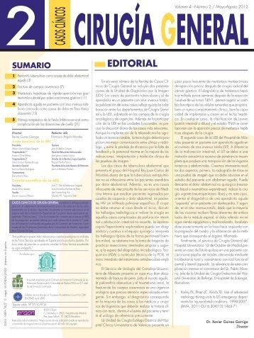 Casos Clínicos de Cirugía General. Volumen 4. Número 2