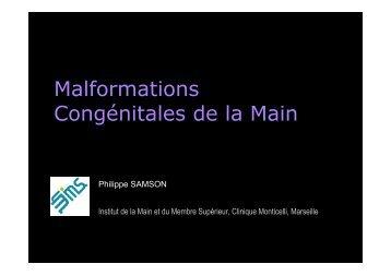 Fichier pdf (Pdf - 8.1 Mo) - Institut de la Main et du Membre Superieur