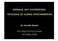 KRÓNIKUS AGYI HYPOPERFUSIO: PATOLÓGIAI ÉS KLINIKAI ...