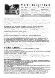Ausgabe 2 Mittwoch, 22.01.2003 - Weichering