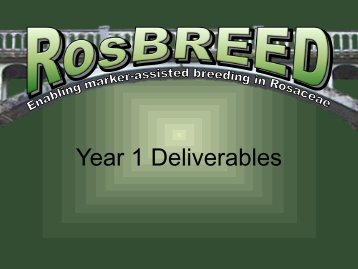 Year 1 Deliverables - RosBREED