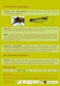 Les abeilles sauvages de Bruxelles - Page 7