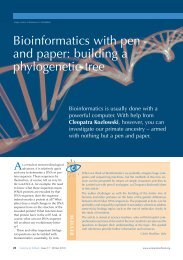 Bioinformatics with pen and paper: building a ... - Science in School