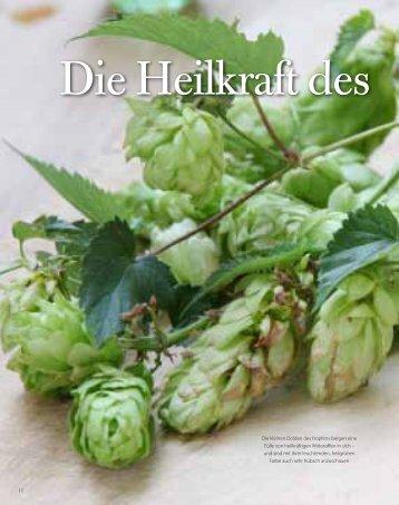 Ganzen Artikel als PDF-Datei laden. - kraeuterwissen.ch