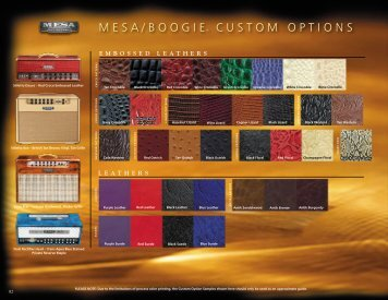 MESA/bOOGIE® cUSTOM OPTIONS