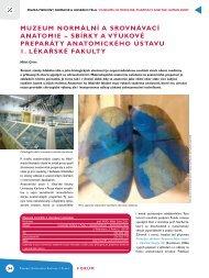 muzeum normální a srovnávací anatomie - Anatomický ústav 1.LF ...