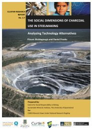 THE SOCIAL DIMENSIONS OF CHARCOAL USE IN STEELMAKING ...
