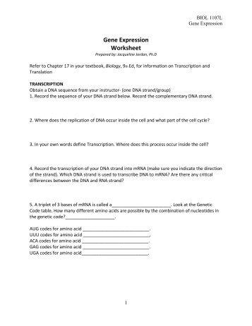 Gene Expression Worksheet Worksheets For School - Studioxcess